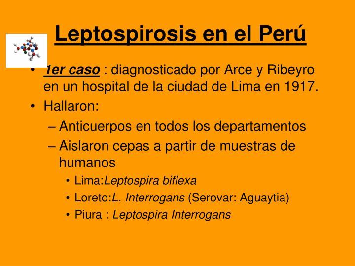 Leptospirosis en el Perú