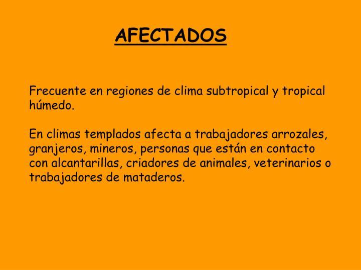 AFECTADOS