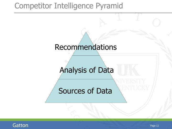 Competitor Intelligence Pyramid