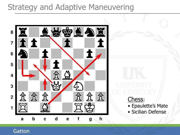 Strategy and Adaptive Maneuvering