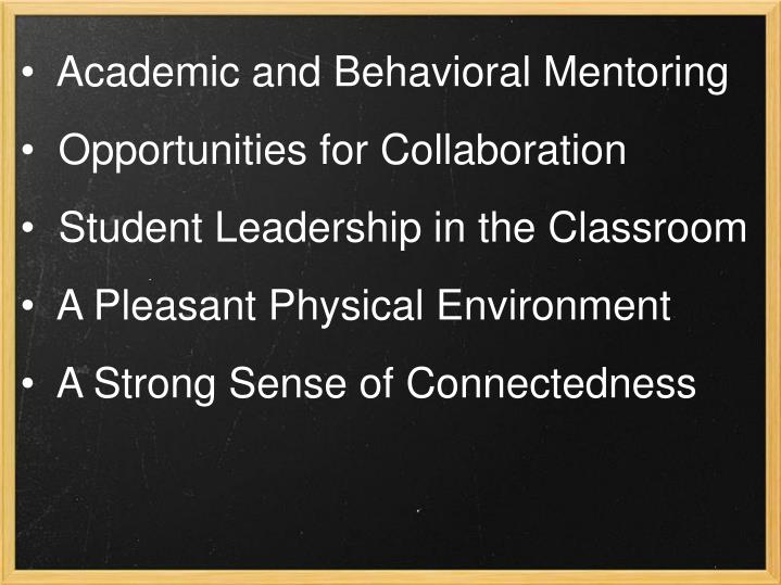 Academic and Behavioral Mentoring