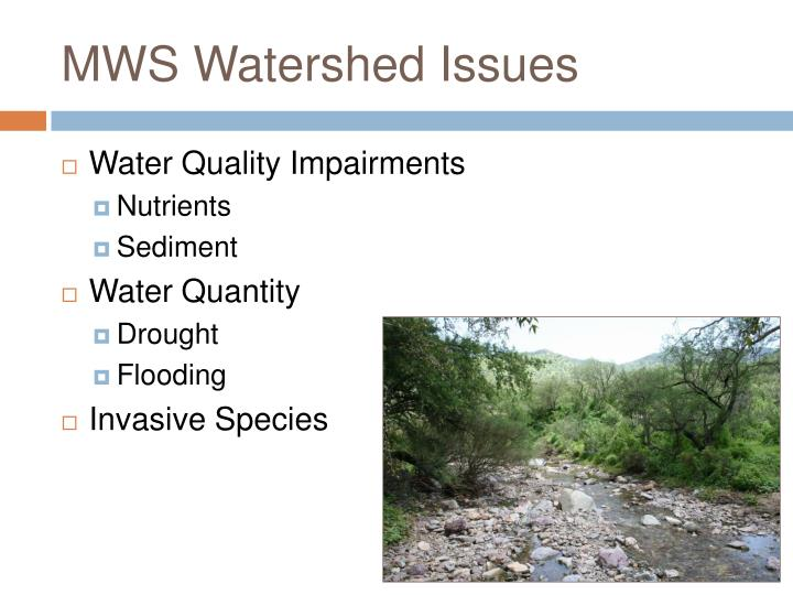 MWS Watershed Issues