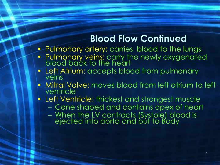Blood Flow Continued