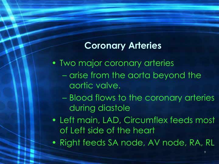 Coronary Arteries