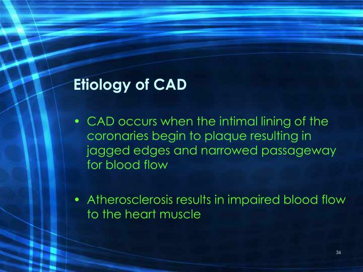 Etiology of CAD