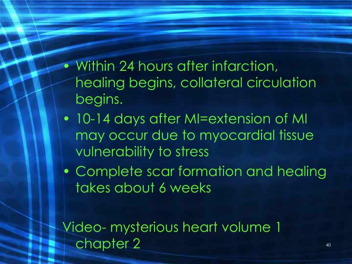 Within 24 hours after infarction, healing begins, collateral circulation begins.