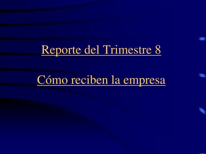 Reporte del Trimestre 8
