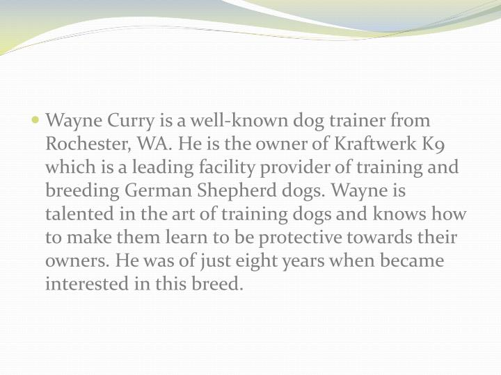 Wayne Curry is a well-known dog trainer from Rochester, WA. He is the owner of Kraftwerk K9 which is...