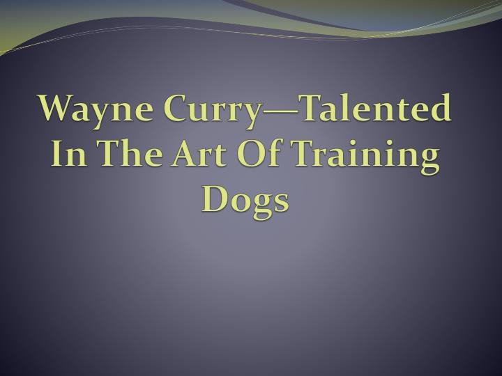 Wayne curry talented in the art of training dogs
