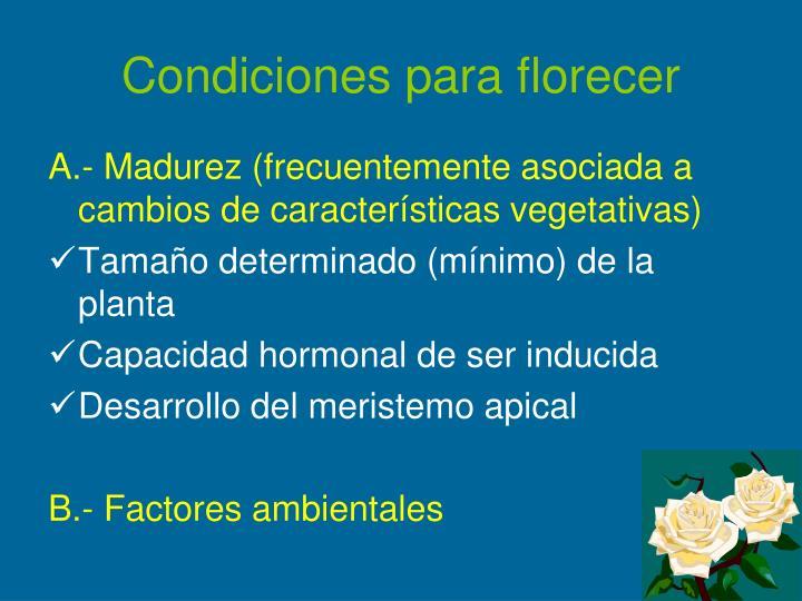 Condiciones para florecer