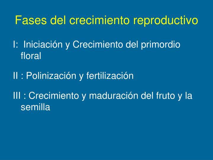 Fases del crecimiento reproductivo