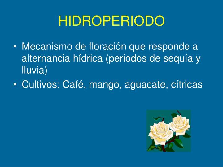 HIDROPERIODO