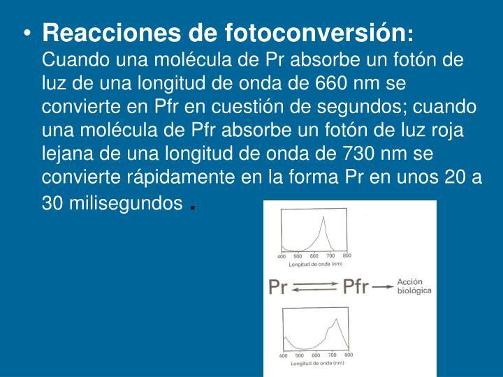 Reacciones de fotoconversión