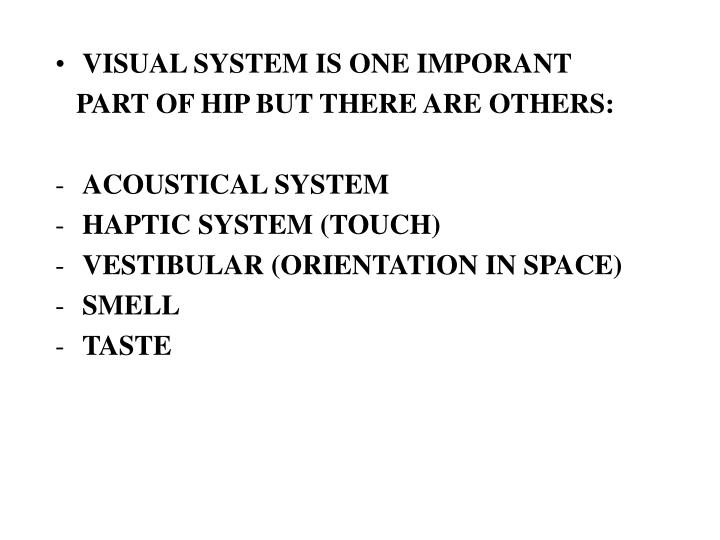 VISUAL SYSTEM IS ONE IMPORANT