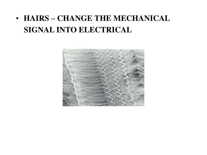 HAIRS – CHANGE THE MECHANICAL