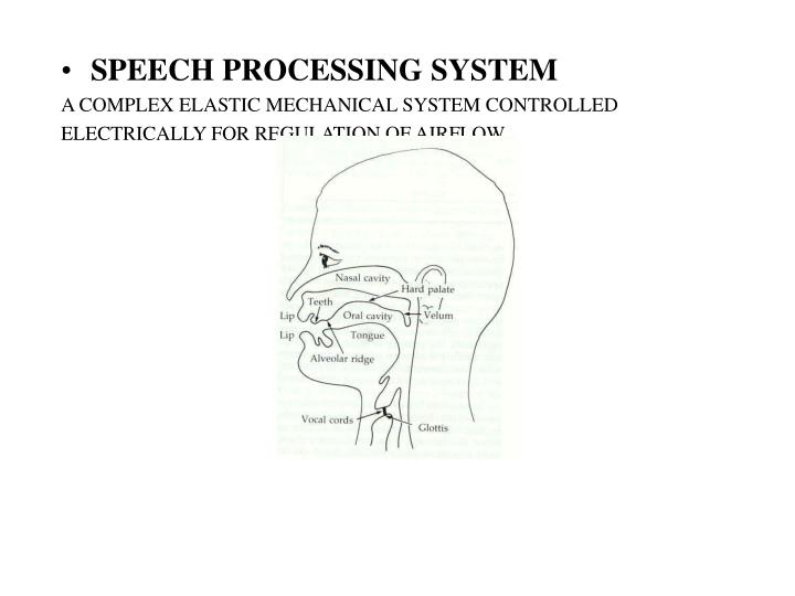 SPEECH PROCESSING SYSTEM