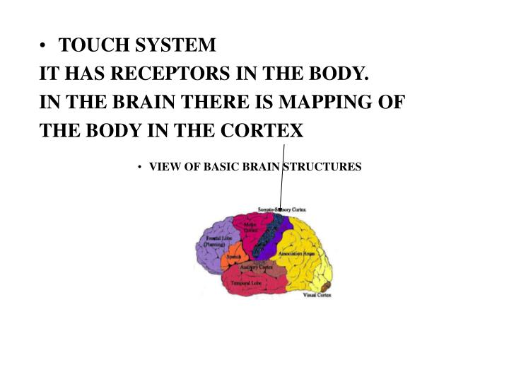 TOUCH SYSTEM