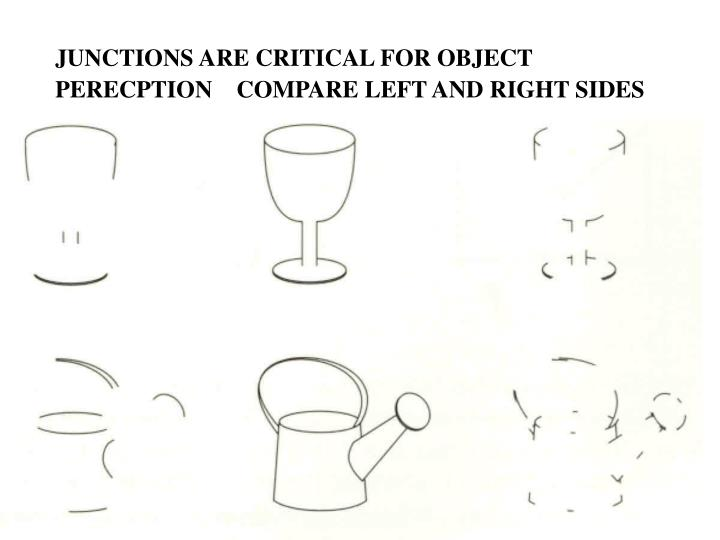 JUNCTIONS ARE CRITICAL FOR OBJECT
