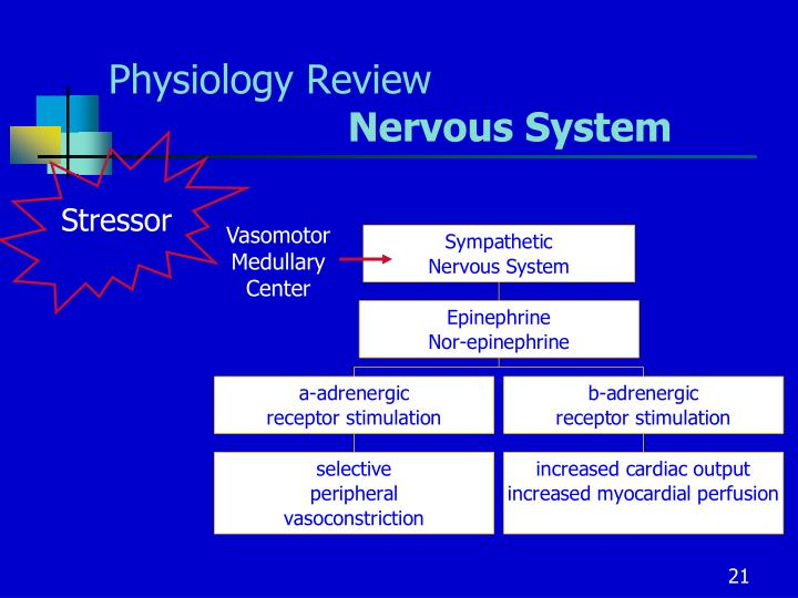 Physiology Review