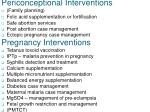 periconceptional interventions pregnancy interventions