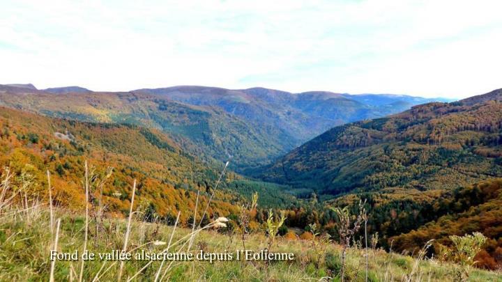 Fond de vallée alsacienne depuis l'Eolienne