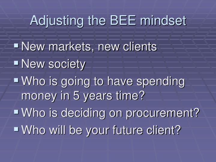 Adjusting the BEE mindset