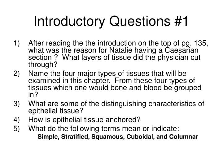 Introductory Questions #1