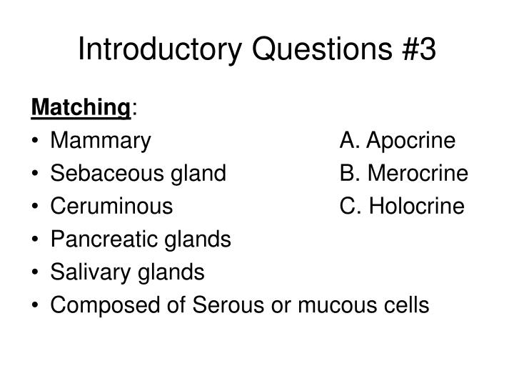 Introductory Questions #3