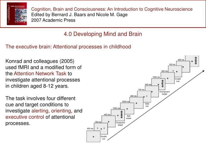 Cognition, Brain and Consciousness: An Introduction to Cognitive Neuroscience
