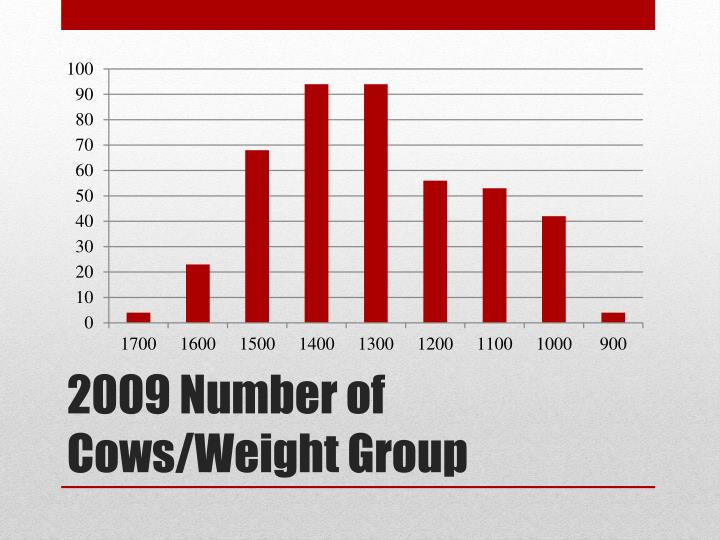 2009 Number of Cows/Weight Group
