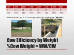 cow efficiency by weight cow weight ww cw