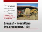 group 1 heavy cows avg pregnant wt 1611