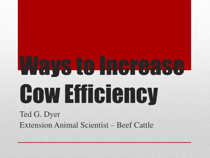 Ways to Increase Cow Efficiency