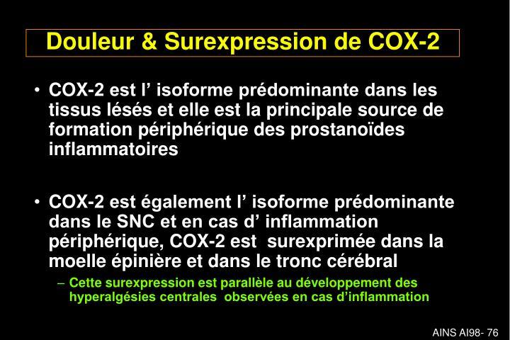 COX-2 est l' isoforme prédominante dans les tissus lésés et elle est la principale source de formation périphérique des prostanoïdes inflammatoires