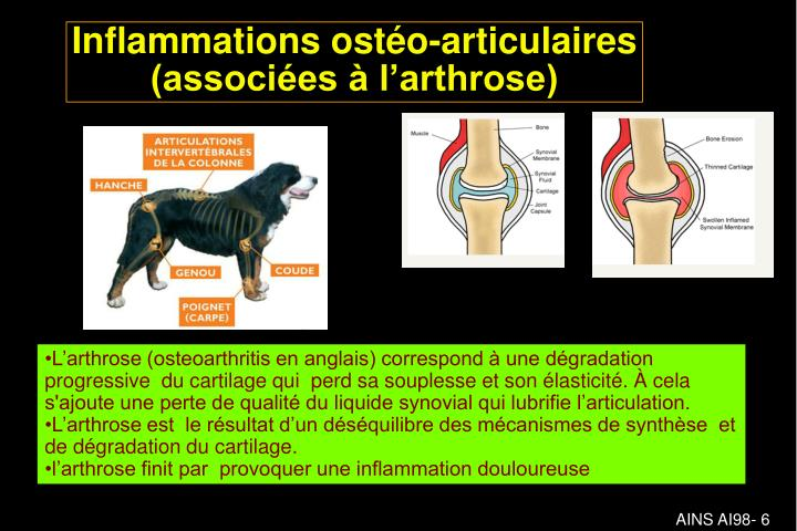 Inflammations ostéo-articulaires