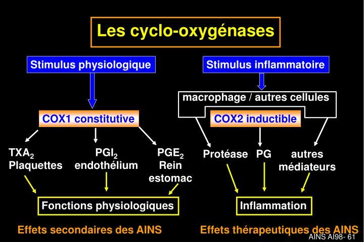 Les cyclo-oxygénases