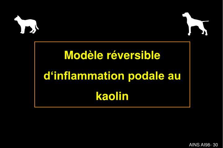 Modèle réversible d'inflammation podale au kaolin