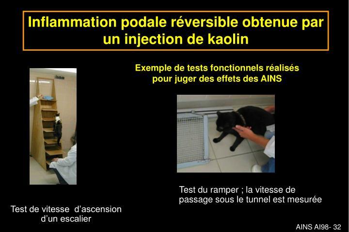 Inflammation podale réversible obtenue par un injection de kaolin