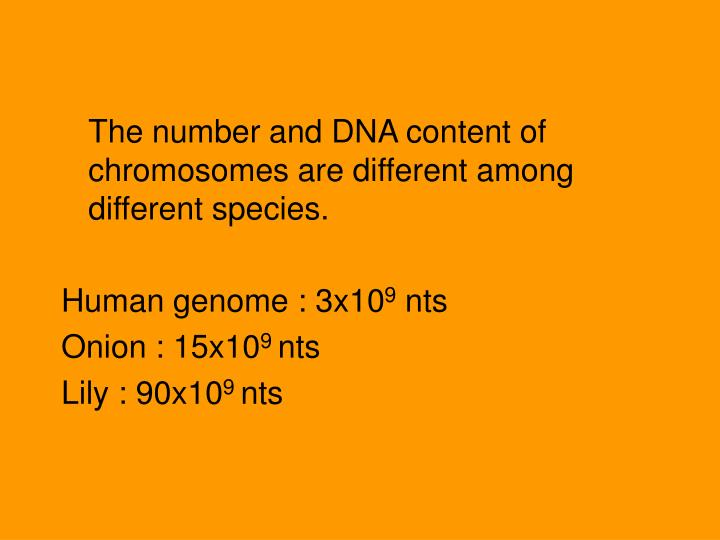 The number and DNA content of chromosomes are different among different species.
