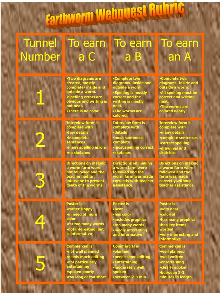 Earthworm Webquest Rubric