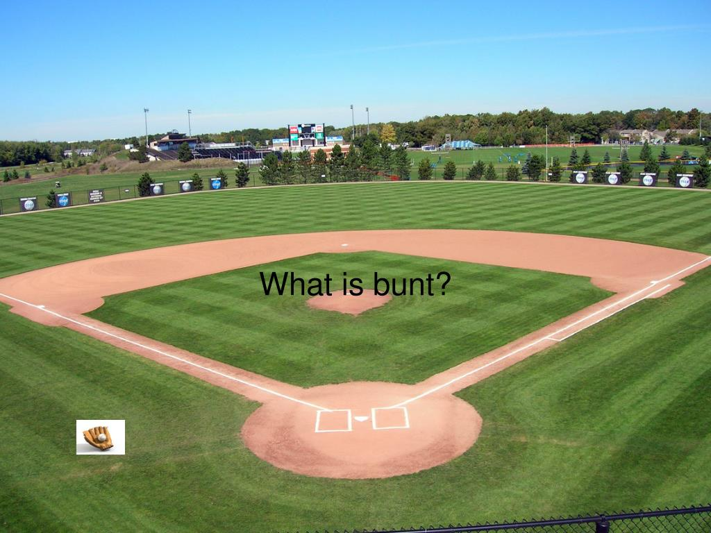 What is bunt?