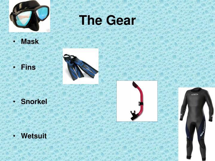 The Gear