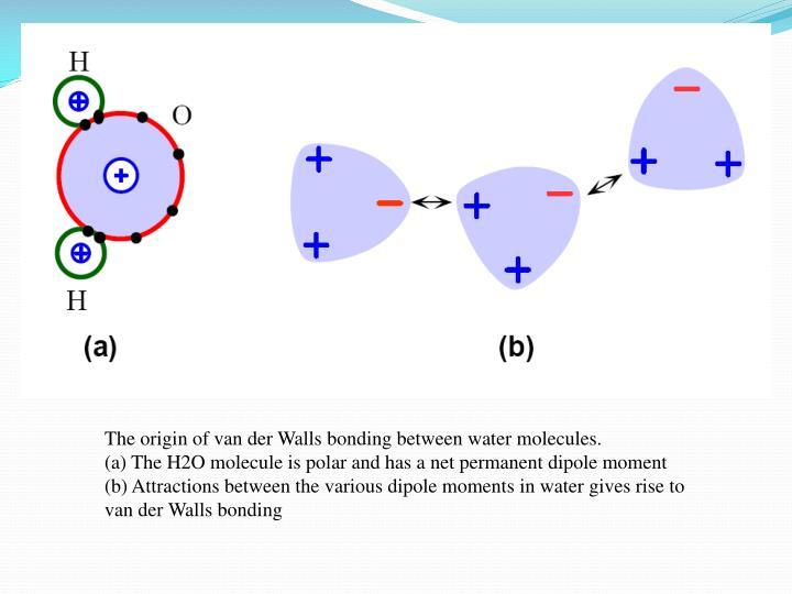 The origin of van der Walls bonding between water molecules.