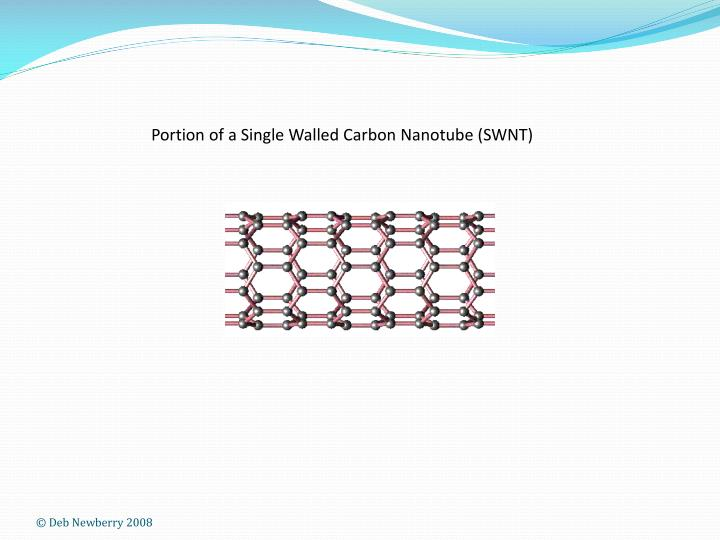 Portion of a Single Walled Carbon Nanotube (SWNT)