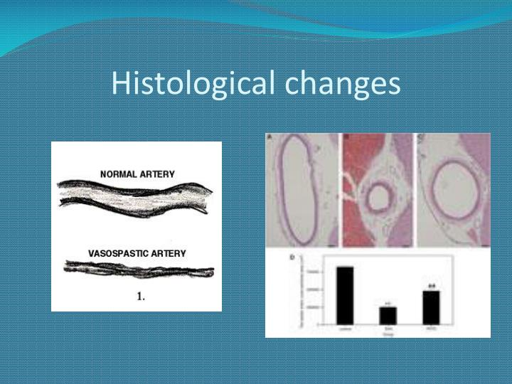 Histological changes