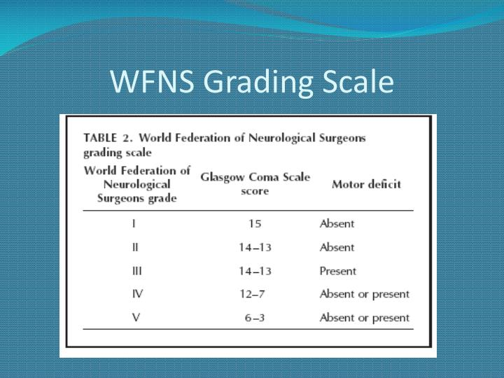 WFNS Grading Scale
