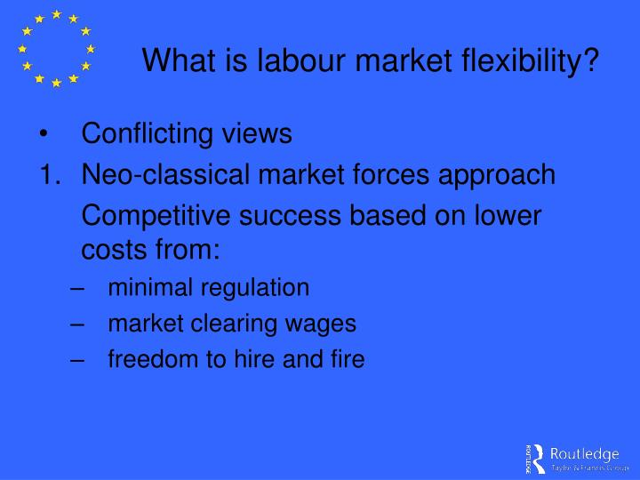 What is labour market flexibility?