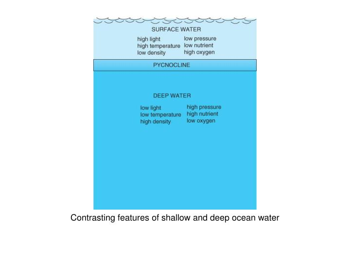 Contrasting features of shallow and deep ocean water