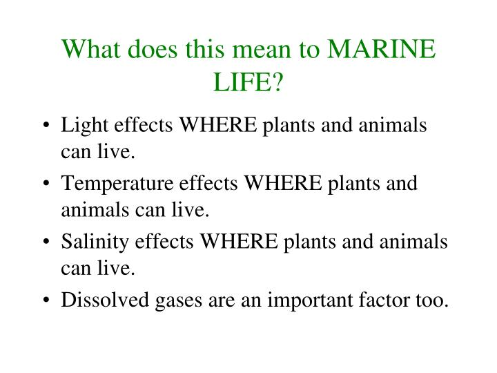 What does this mean to MARINE LIFE?