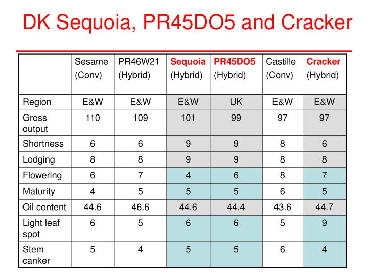 DK Sequoia, PR45DO5 and Cracker